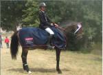 Looping et moi - Männlich Pferd (5 Jahre)